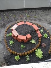 CEU Edible Rooftop Garden
