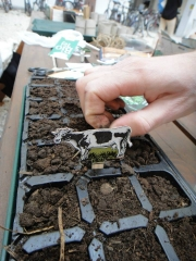 "Students in ""Organic Gardening Practicum"" class welcome spring"
